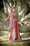 Young beautiful Indian Hindu bride standing under tree. Wearing bridal gown Royalty Free Stock Images