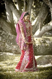 Young beautiful Indian Hindu bride standing under tree. Wearing bridal gown Royalty Free Stock Image