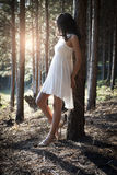 Young beautiful Indian woman leaning against tree in forest Royalty Free Stock Photography