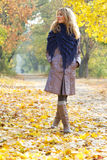 Young beautiful lady in an autumn park Royalty Free Stock Photo