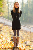 Young beautiful lady in an autumn park stock images