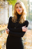 Young beautiful lady in an autumn park stock photography
