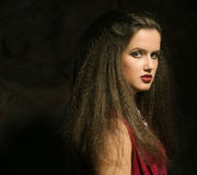 Young beautiful lady with magnificent dark hair Royalty Free Stock Image