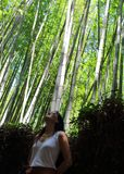 Young beautiful lady posing in front of the camera with Arashiyama bamboo forest on background, Kyoto, Japan.  Royalty Free Stock Photography