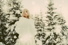 Young beautiful lady in winter forest Royalty Free Stock Photography