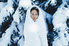 Young beautiful lady in winter forest Stock Photo