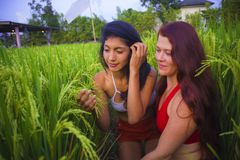 Young beautiful latin girl and her attractive red hair girlfriend both women enjoying Summer holidays together walking on rice. Field smiling happy relaxed in stock photography