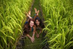 Young beautiful latin girl and her attractive red hair girlfriend both women enjoying Summer holidays together walking on rice. Field smiling happy relaxed in stock images