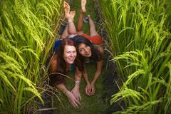Young beautiful latin woman and her attractive red hair girlfriend both girls enjoying Summer holidays together on rice field. Young beautiful latin women and royalty free stock photo
