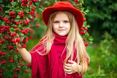 Young beautiful little stylish girl in a sunny autumn park stock photos