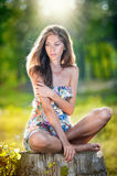 Young beautiful long hair woman wearing a multicolored dress posing on a stump Stock Photo