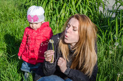 Young beautiful mother with adorable little daughter Baby girl with long hair Europeans in a meadow with grass and flowers, plucke. D a flower dandelion and Stock Photography