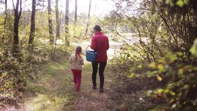 Young beautiful mother and her daughter walking in the forest at autumn with basket and looking for mushrooms. Back view stock footage