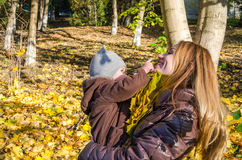 Young beautiful mother playing with her daughter, who is biting mother's nose, in the autumn park among the yellow fallen maple le royalty free stock photography