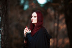 Young beautiful and mysterious woman in woods, in black cloak with hood, image of forest elf or witch Royalty Free Stock Images