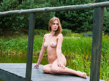 Young beautiful naked girl Stock Photography