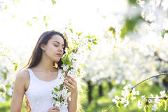 Young beautiful natural brunette woman at spring sunset portrait. In blossoming garden. Happiness, fun and harmony concept Royalty Free Stock Photography