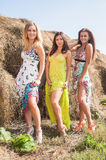 Young beautiful playful women near hay stacks Stock Images