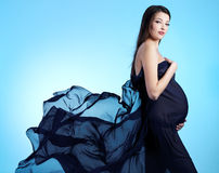 Young beautiful   pregnant woman Stock Photography