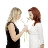 Young beautiful red and blond haired girls Stock Photography