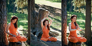 Young beautiful red-haired girl does yoga in Park on green back. Collage Royalty Free Stock Image