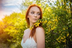 Redhead girl in acacia trees Royalty Free Stock Image