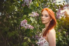 Redhead girl in lilac trees Stock Photos