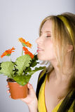 Young beautiful retro woman with flowers in a pot Royalty Free Stock Photos