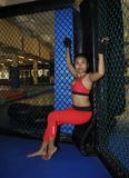 Beautiful and sexy Asian fighter woman in fighting gloves and sport clothes inside MMA cage posing cool Royalty Free Stock Photography