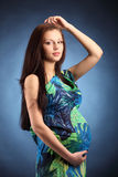 Young beautiful sexy and stylish pregnant woman Stock Images