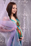 Young beautiful sexy and stylish pregnant woman Royalty Free Stock Image