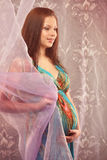 Young beautiful sexy and stylish pregnant woman Royalty Free Stock Photos