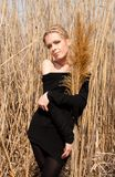 Young beautiful slim girl in the reed Royalty Free Stock Images