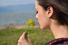 Young beautiful  smells flowers Royalty Free Stock Photography