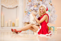Young beautiful smiling santa woman near the Christmas tree with. Bunny. Fashionable luxury  girl celebrating New Year Royalty Free Stock Images