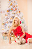 Young beautiful smiling santa woman near the Christmas tree with Royalty Free Stock Photography