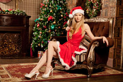 Young beautiful smiling santa woman near the Christmas tree. Fas Stock Photos