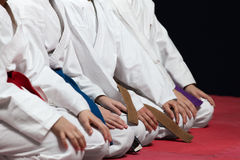 Young, beautiful, successful multi ethical karate kids in karate position. Royalty Free Stock Photos