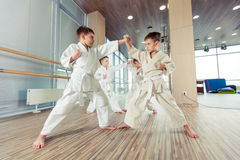 Young, beautiful, successful multi ethical kids in karate position. Young, beautiful, successful multi ethical karate kids in karate position Stock Photo