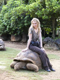 Young beautiful tourist woman riding  on giant turtle Royalty Free Stock Image