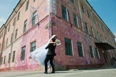 Young beautiful wedding couple Stock Photography