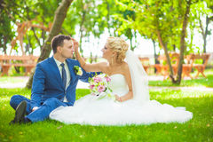 Young beautiful wedding couple in the park Stock Photography
