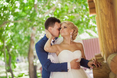 Young beautiful wedding couple in the park Stock Images