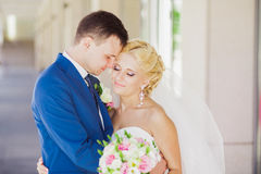 Young beautiful wedding couple in the park Stock Image