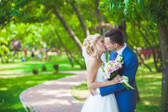 Young beautiful wedding couple in the park Royalty Free Stock Photography