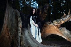 Young beautiful witch with long dark hair in root of old tree Stock Images
