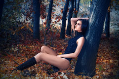 A young beautiful woman in the autumn forest Stock Images