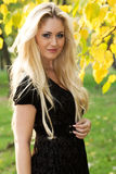 Young beautiful woman in an autumn park Royalty Free Stock Image