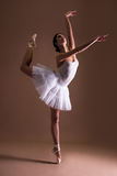 Young beautiful woman ballet dancer in tutu posing on toes over Royalty Free Stock Image