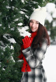 Young beautiful woman behind snow covered pine Royalty Free Stock Image